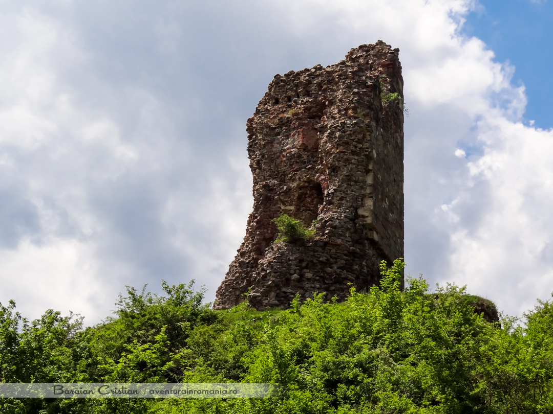 Cetatea Mehadia