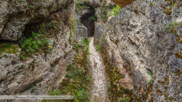 Geoagiu Bai