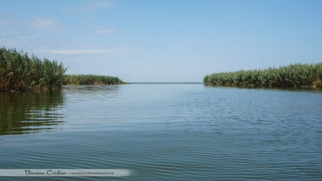 Lacul Rosulet