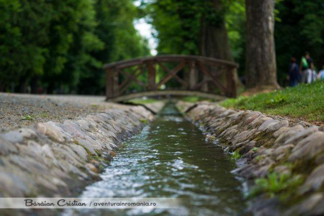 Parcul Central_Zilele Clujului