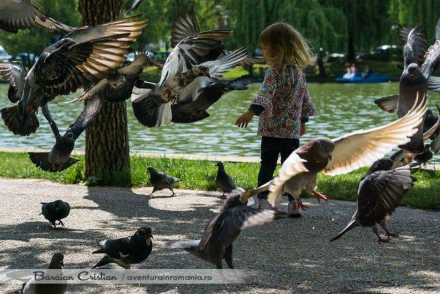 Zilele Clujului_Lacul Chios