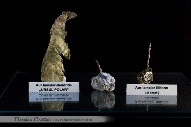 Ursul_Muzeul_Aurului