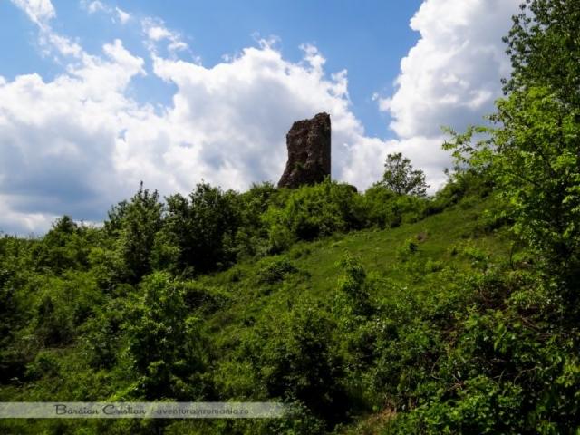 Cetatea Mehadiei
