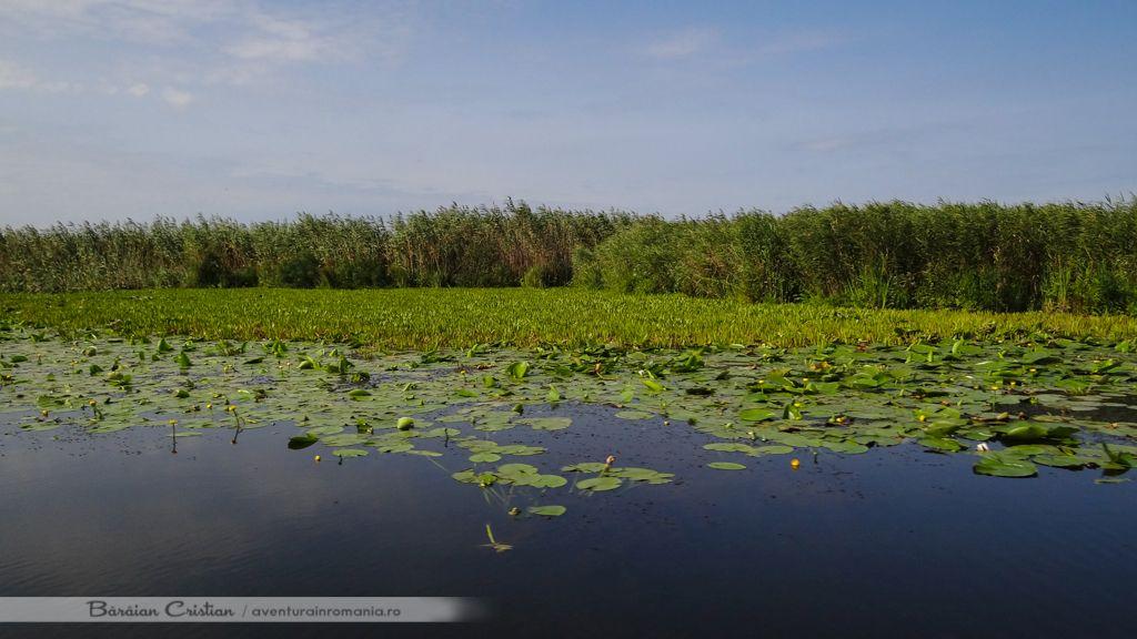 Delta Dunarii Romania