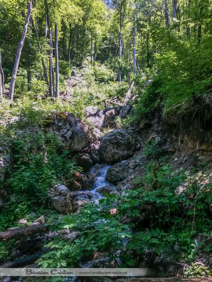 Cascada Roset