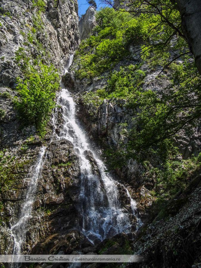 Cascada Cociu