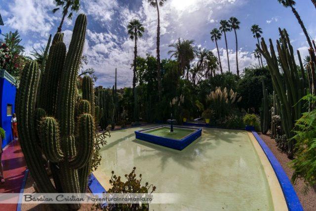 Marrakech_majorelle garden