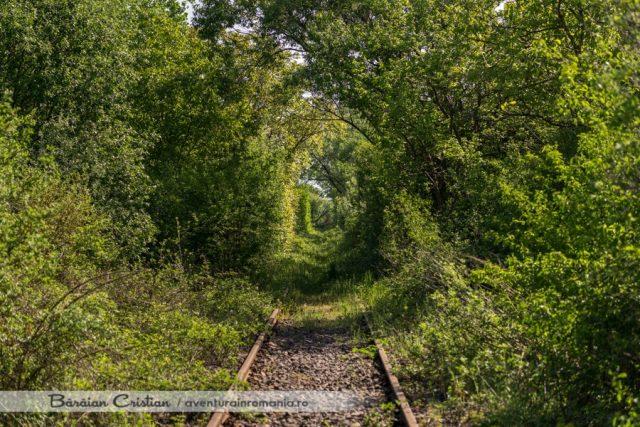 Tunelul_Dragostei