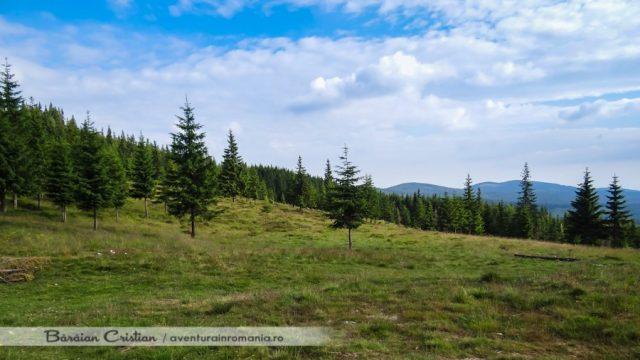 Muntele_Mare