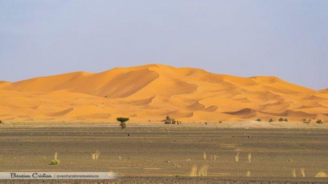 Deșert_safari_cu_cămila