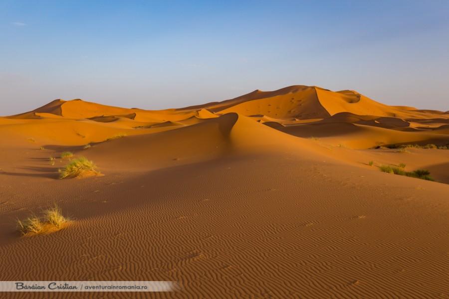 Deșert safari cu cămila