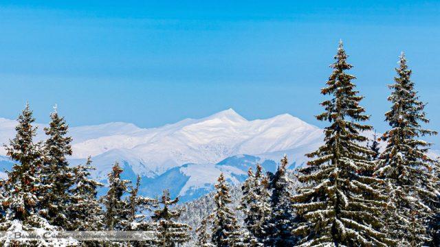 Vârful Ineu văzut de pe Munții Călimani