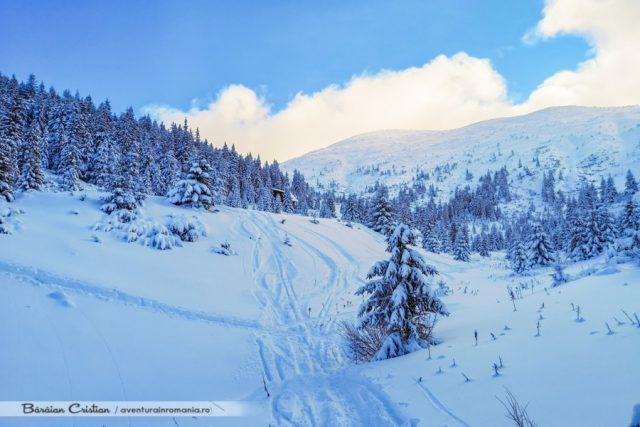 Vârful_Bistriciorul_Munții_Călimani