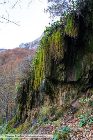 Cascada_Sipote