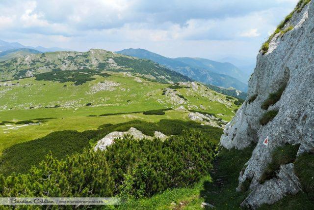 Piatra Iorgovanului